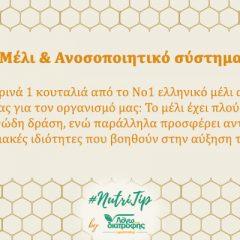Μέλι και Ανοσοποιητικό Σύστημα