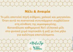 Μέλι και Αναιμία
